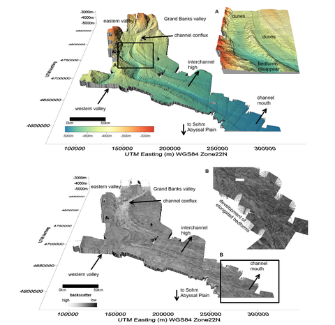morphology Grand Banks
