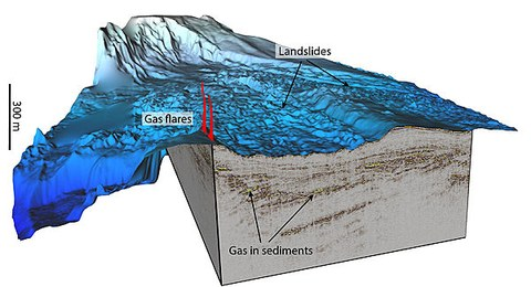 Tuaheni Landslide, Bathymetry and 3D seismics