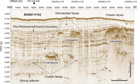 MSM87 seismic